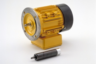 An electric motor and an air motor